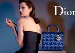 lady_dior-marion2-800x533